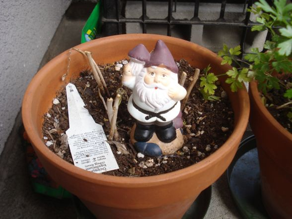 herb-garden-07.jpg