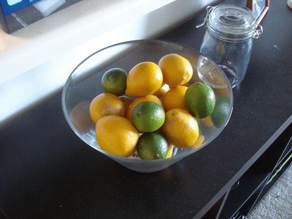 meyer-lemons-01.jpg