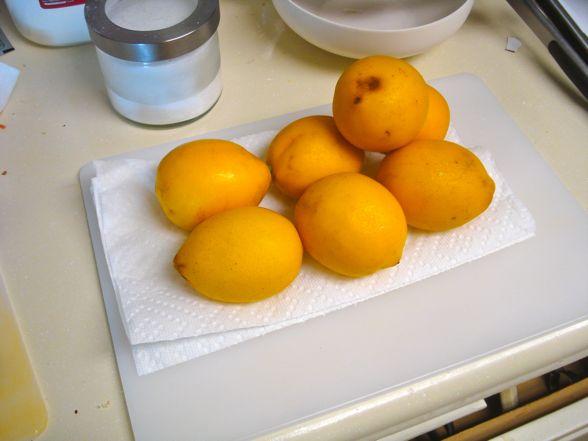 meyer-lemons-06.jpg