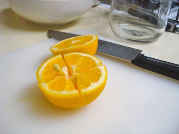 meyer-lemons-09.jpg